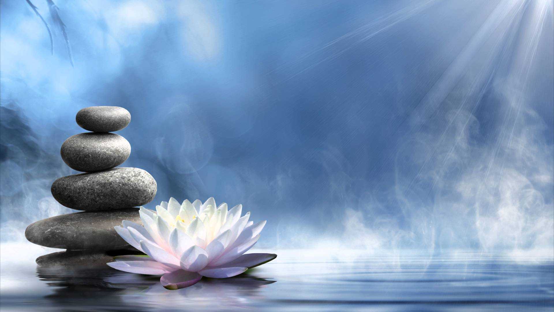 Lotus-praktijk-Medium-Mary-Willemsen